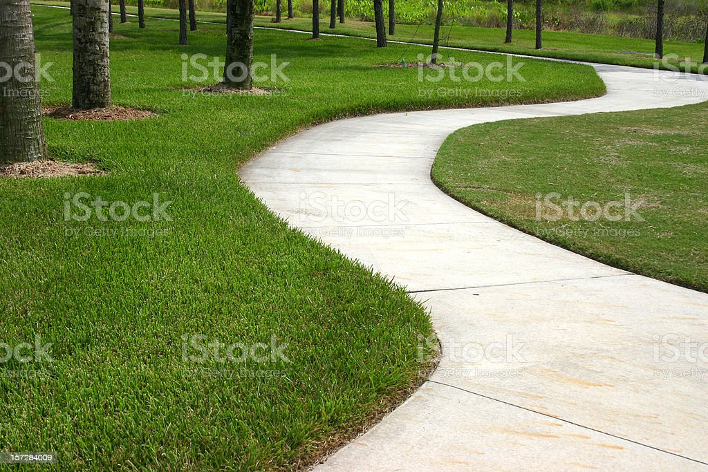 A path way in a middle of grasses and trees stock photo