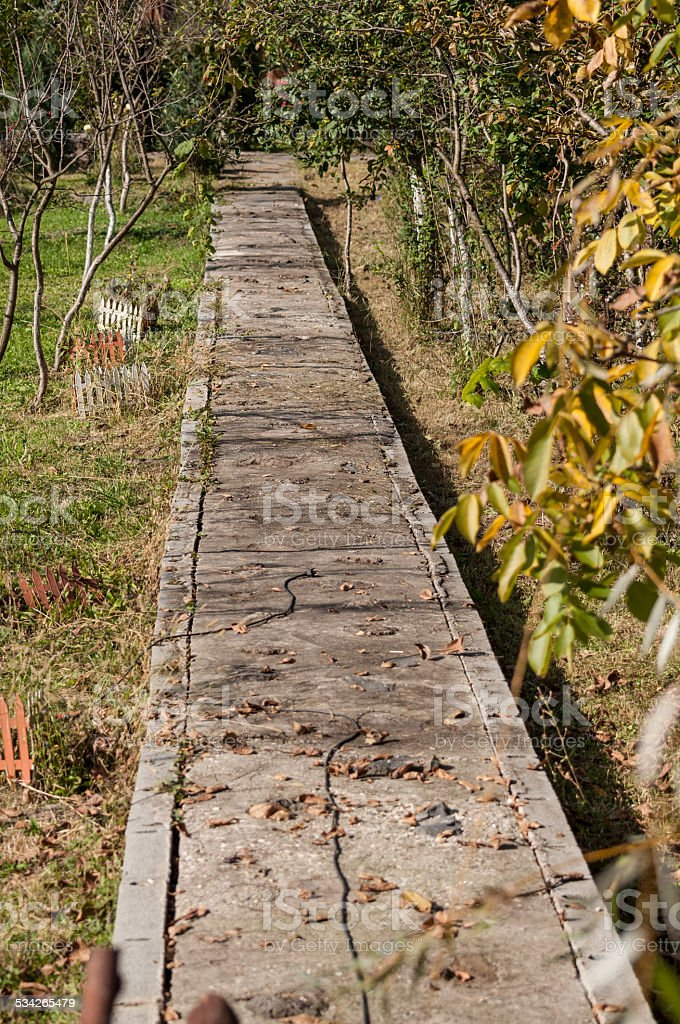 path way in garden surrounded by autumn leaf royalty-free stock photo