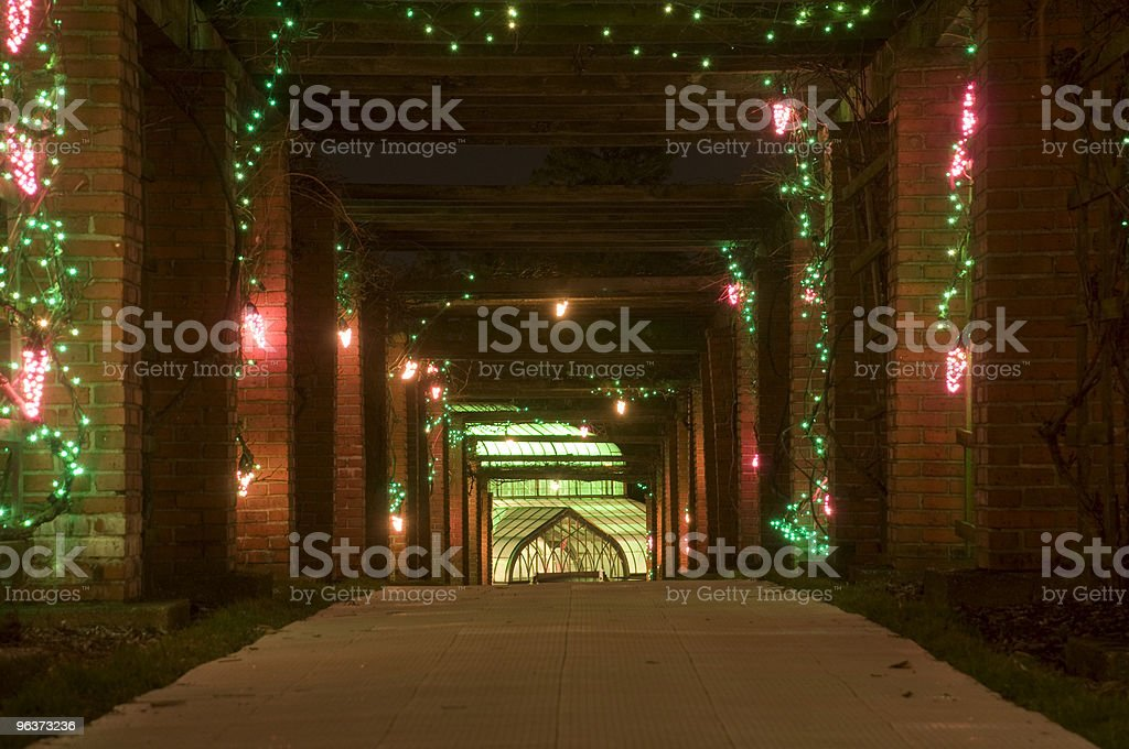 Path with Grape Lights royalty-free stock photo