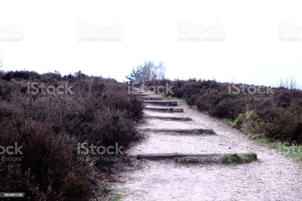 Path with steps  at the Posbank in Rheden, National park Veluwe, Netherlands stock photo