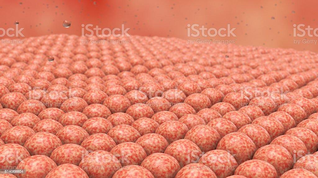 Pathogen, Cells. 3D artwork. stock photo