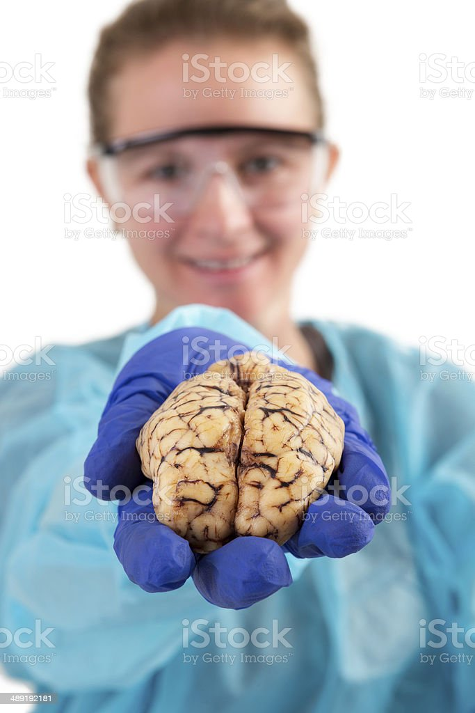 Pathologist holding a brain in her hand royalty-free stock photo