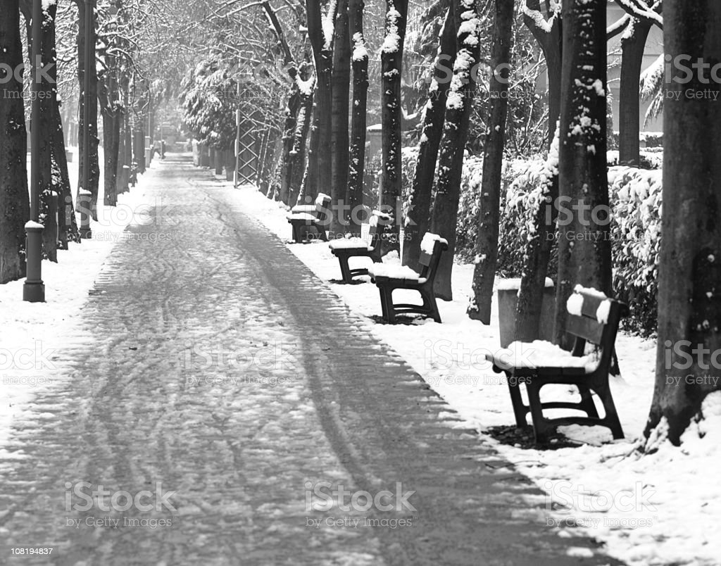 Pathway and Benches in Park Covered with Snow royalty-free stock photo