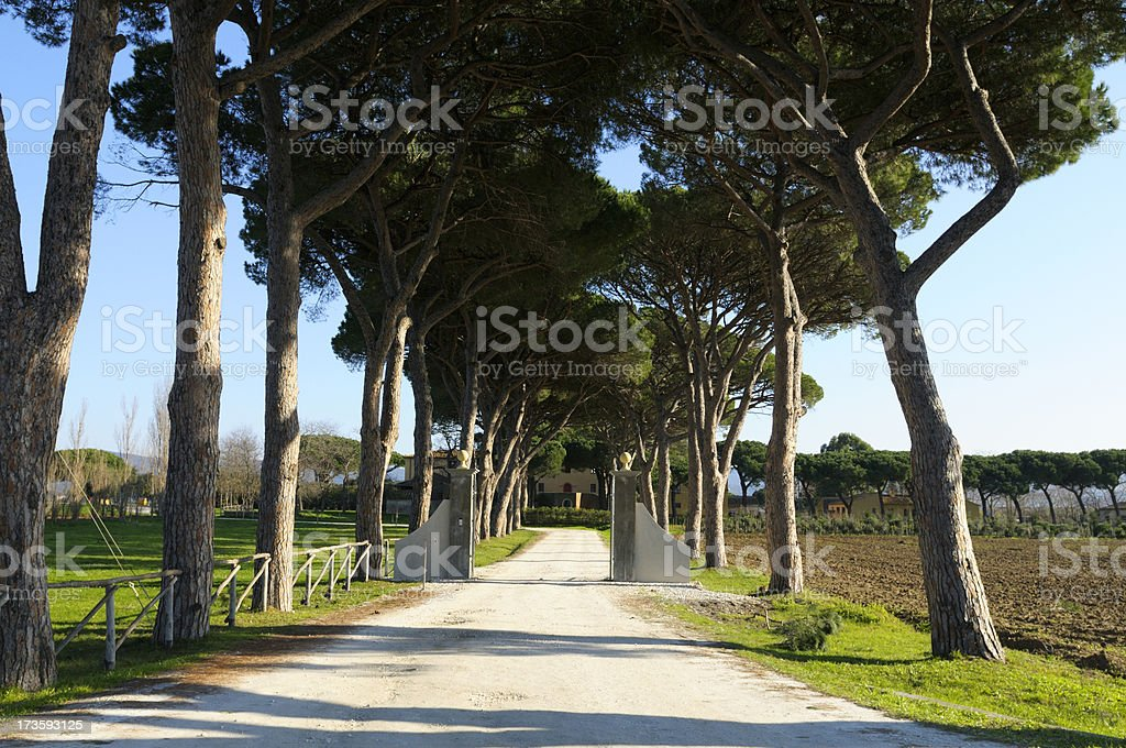 Pathway and farmhouse royalty-free stock photo