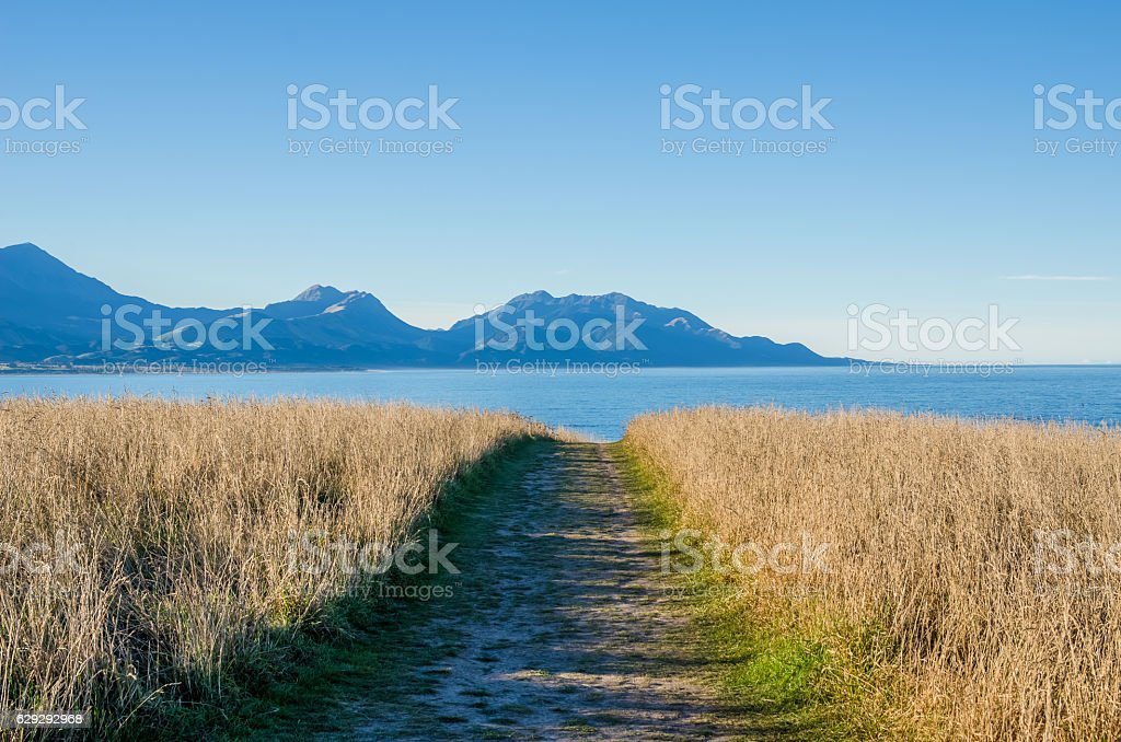 Pathway at the Point Kean Viewpoint, Kaikoura New Zealand. stock photo