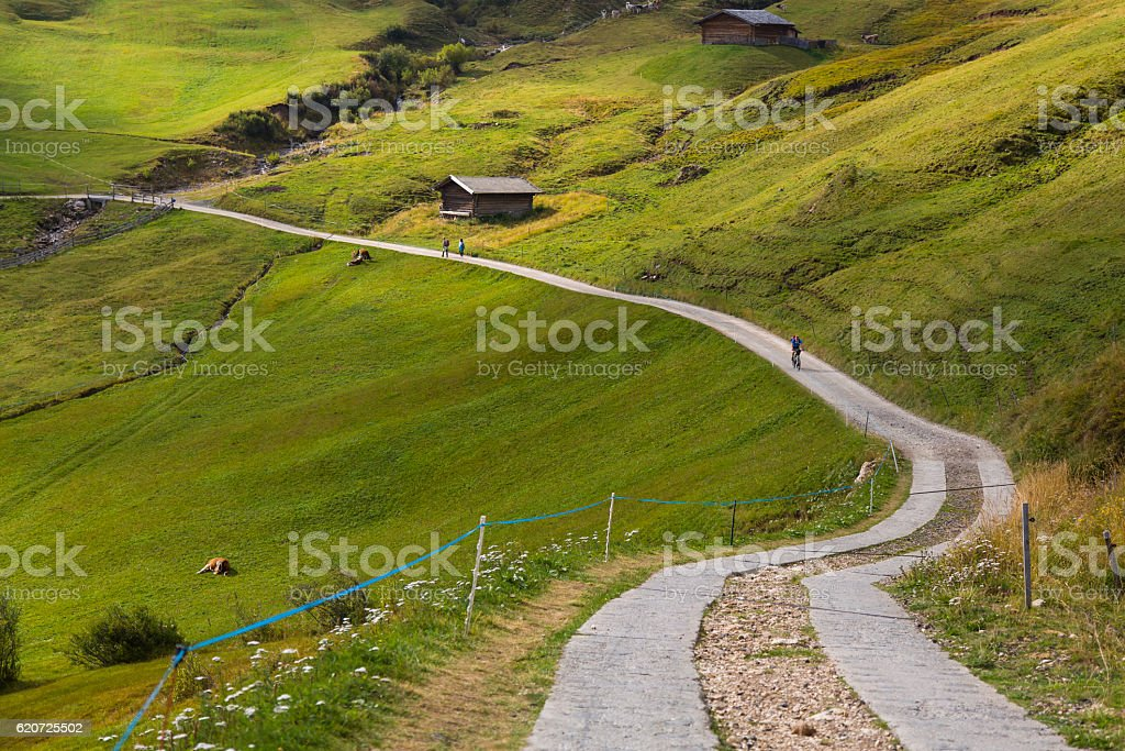 Pathway in Seiser Alm stock photo