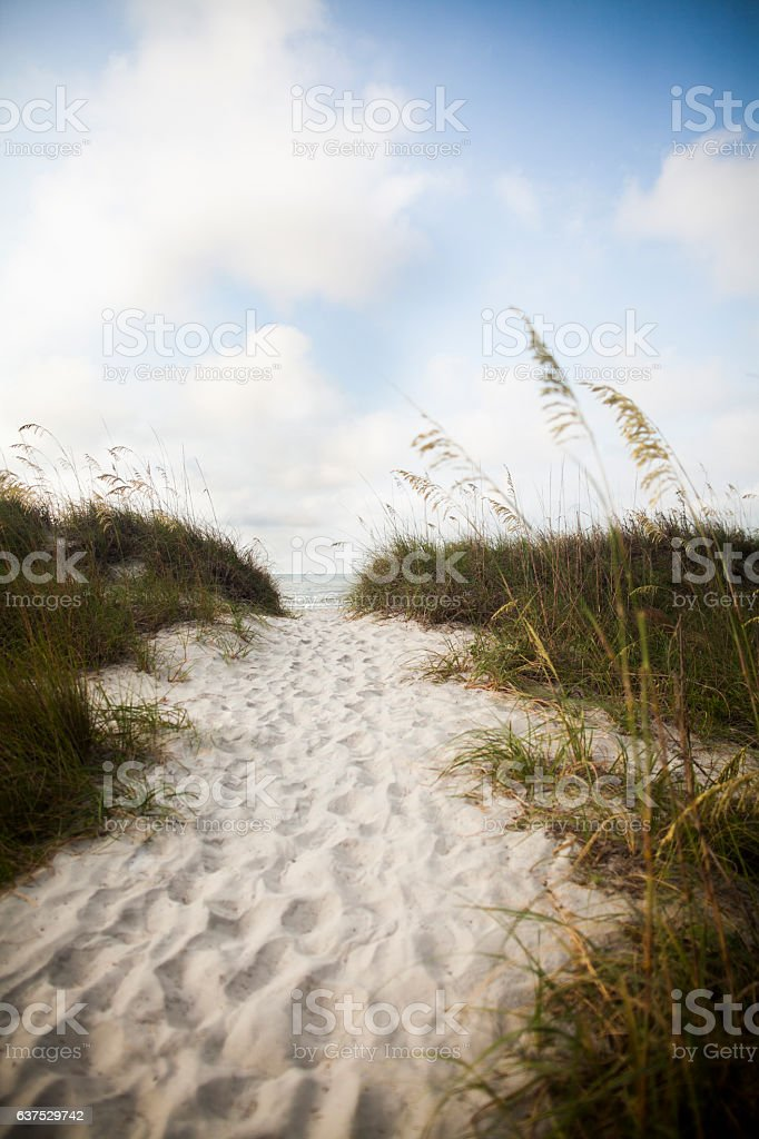 Pathway in sand dune to beach stock photo