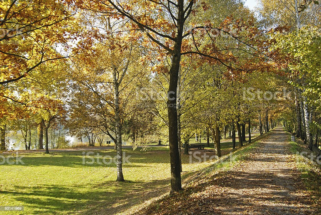 Pathway in the Fall royalty-free stock photo