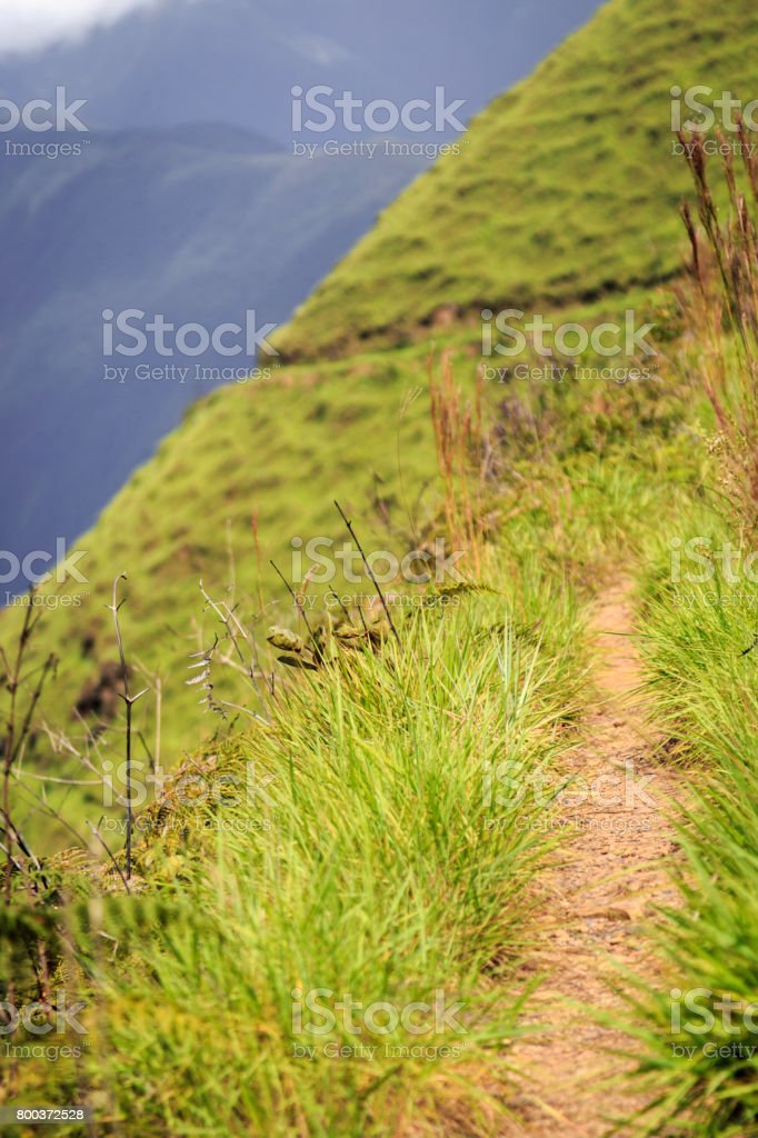 Pathway in the steep hills of los Yungas stock photo