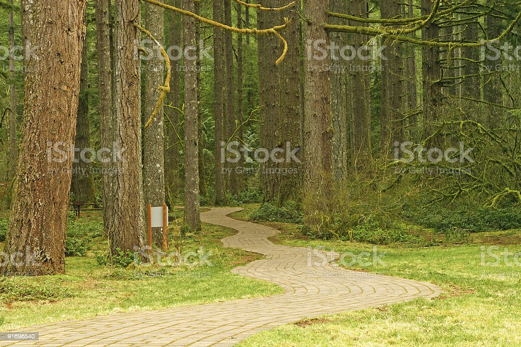 Pathway into the Forest royalty-free stock photo