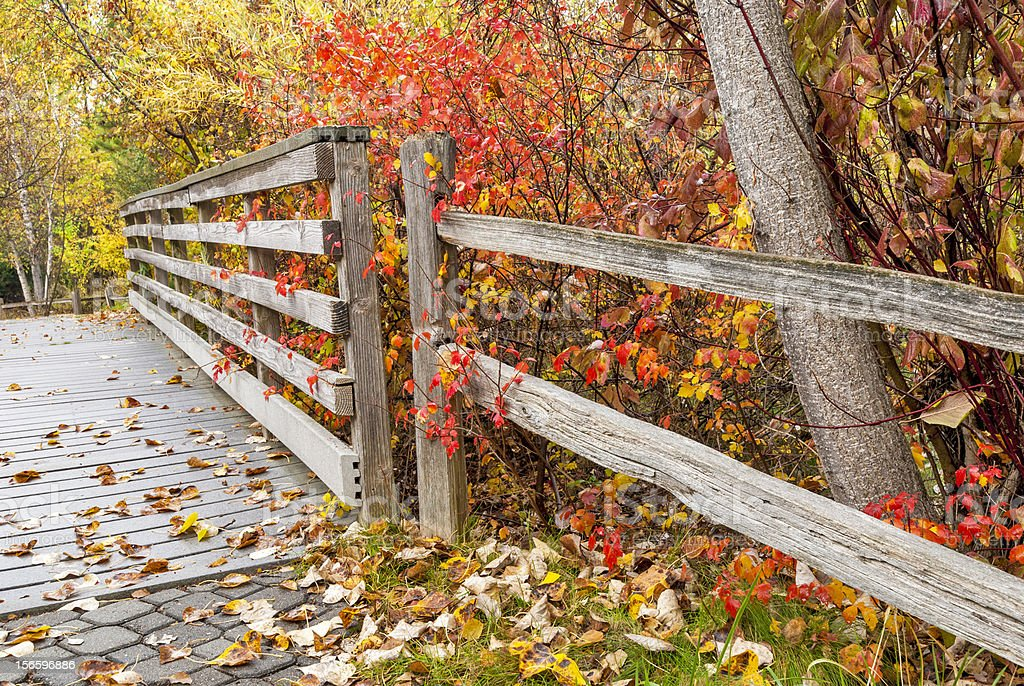Pathway leads over bridge in a park with fall leaves royalty-free stock photo