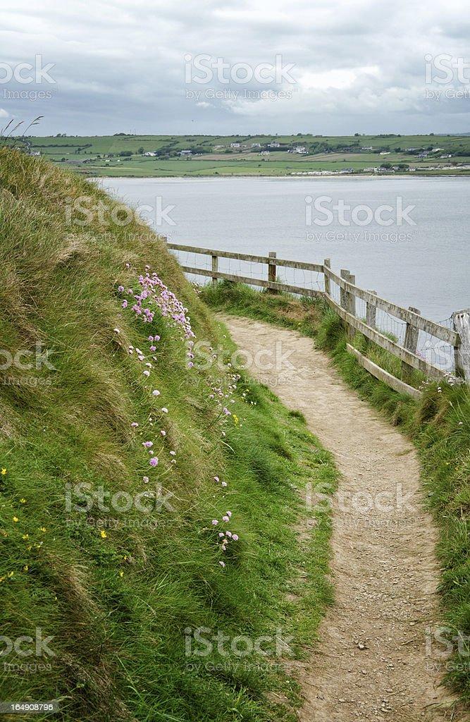 Pathway near ocean in Ireland stock photo