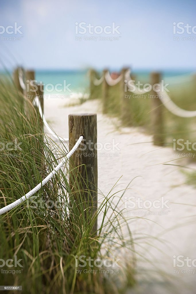 Pathway to the Beach stock photo