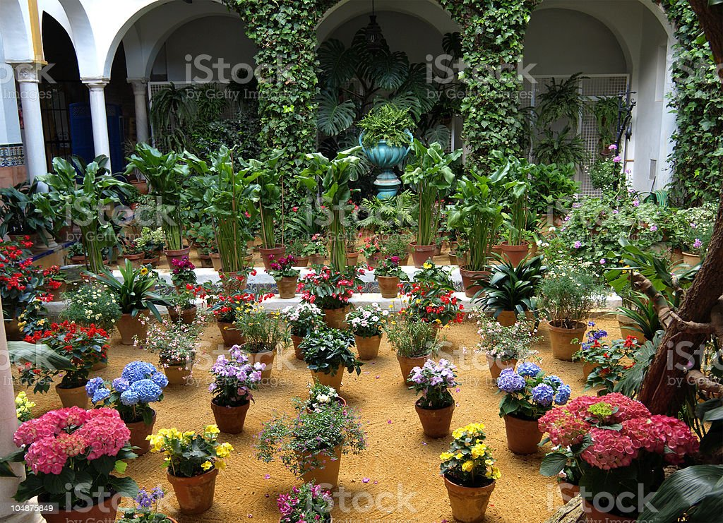 Patio Flowers, Seville royalty-free stock photo