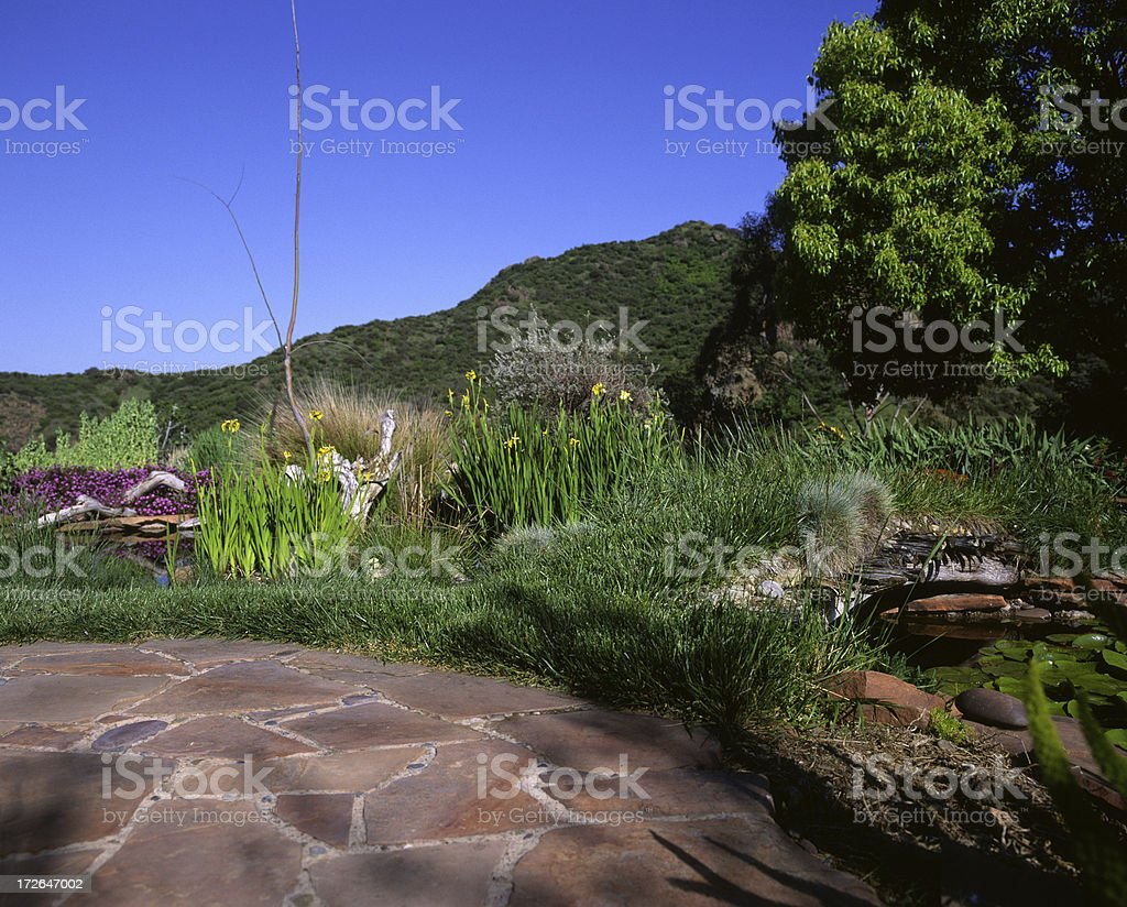 Patio with a beautiful yard stock photo