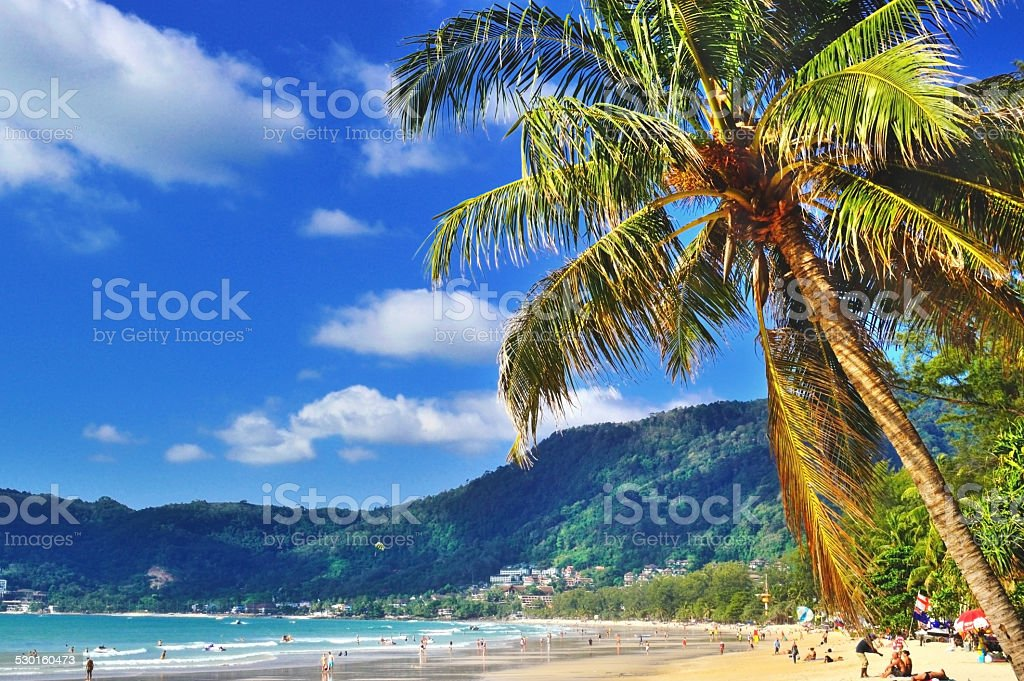 Patong beach with coconut trees stock photo