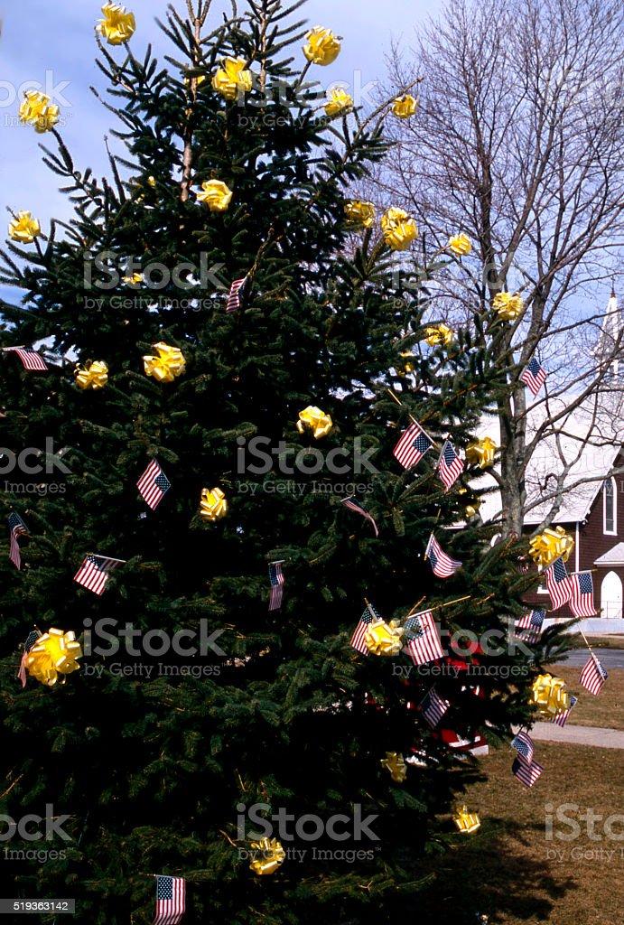 patriot tree stock photo