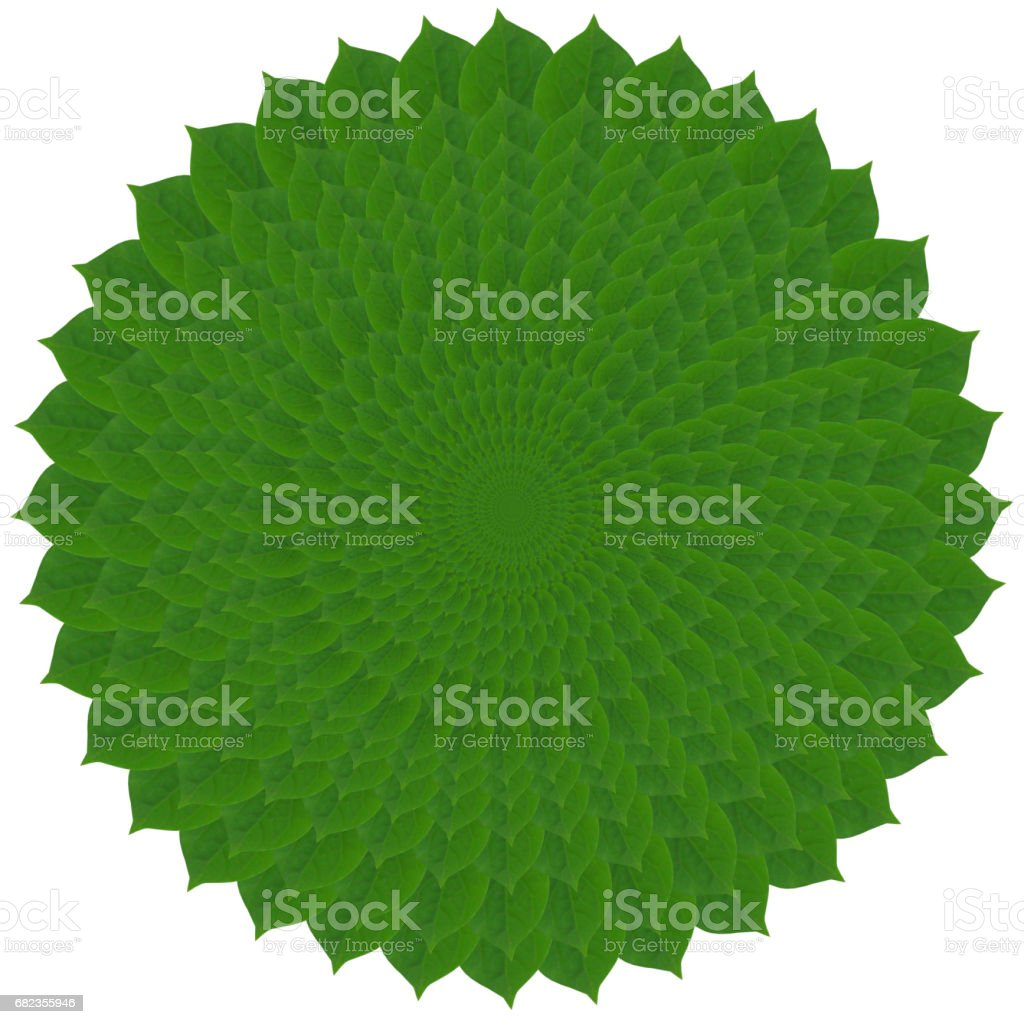 Pattern from green abstract circles from leaves stock photo