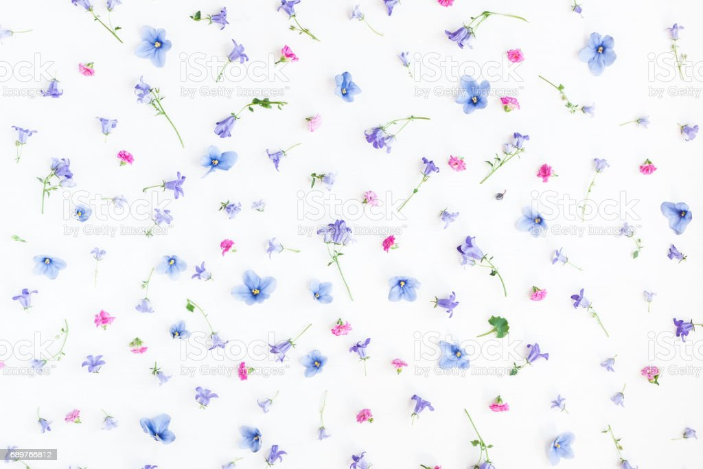 Pattern made of bell flowers, pink flowers and pansy flowers stock photo