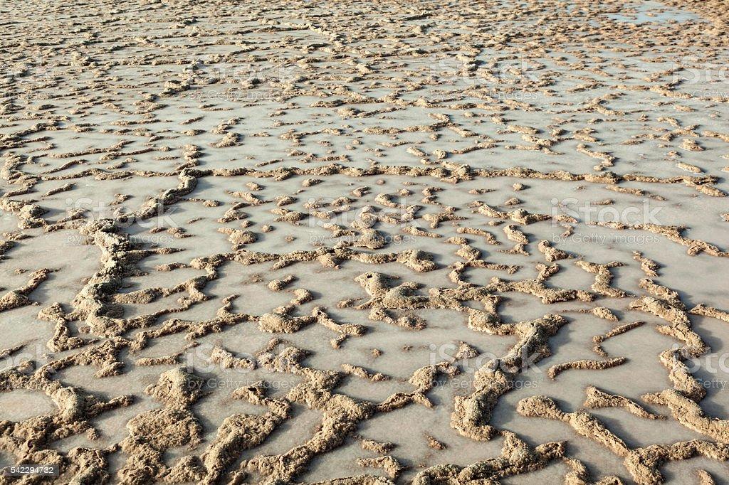 pattern of field in Salt refinery, Saline from Janubio stock photo
