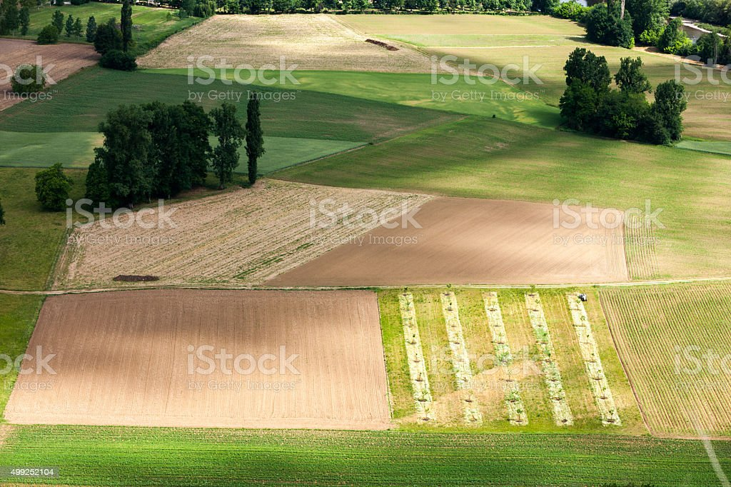 Pattern of fields and trees stock photo