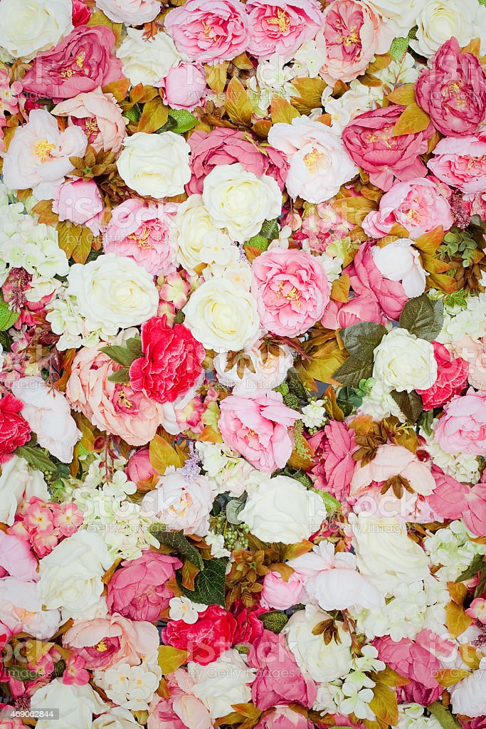 Pattern of fresh colorful roses stock photo