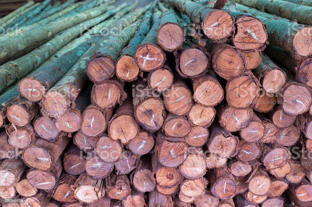 Motif de pile de bois brut sciés photo libre de droits