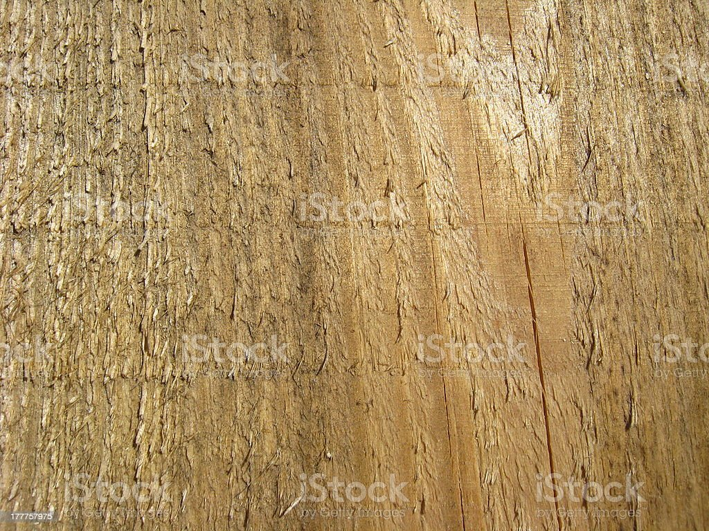 Pattern on cut of a tree royalty-free stock photo