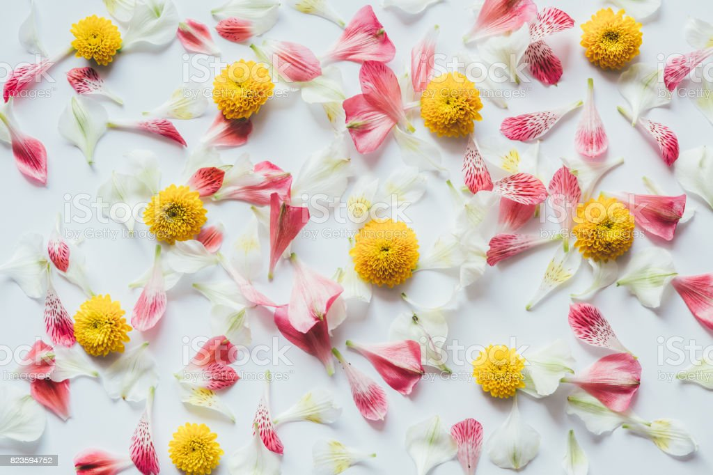 Pattern With Colorful Flowers stock photo