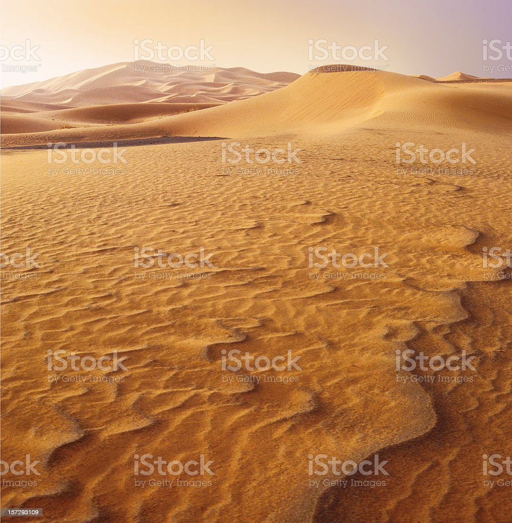 Patterns in sand of the Sahara desert at sunset stock photo