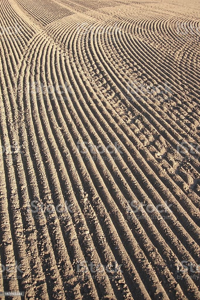 Patterns of cultivation royalty-free stock photo
