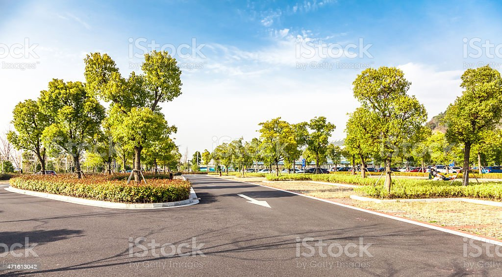 Paved road among green trees and plants on a sunny day stock photo