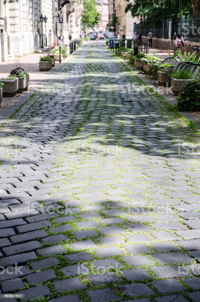 Paved street with grass growing between rocks stock photo