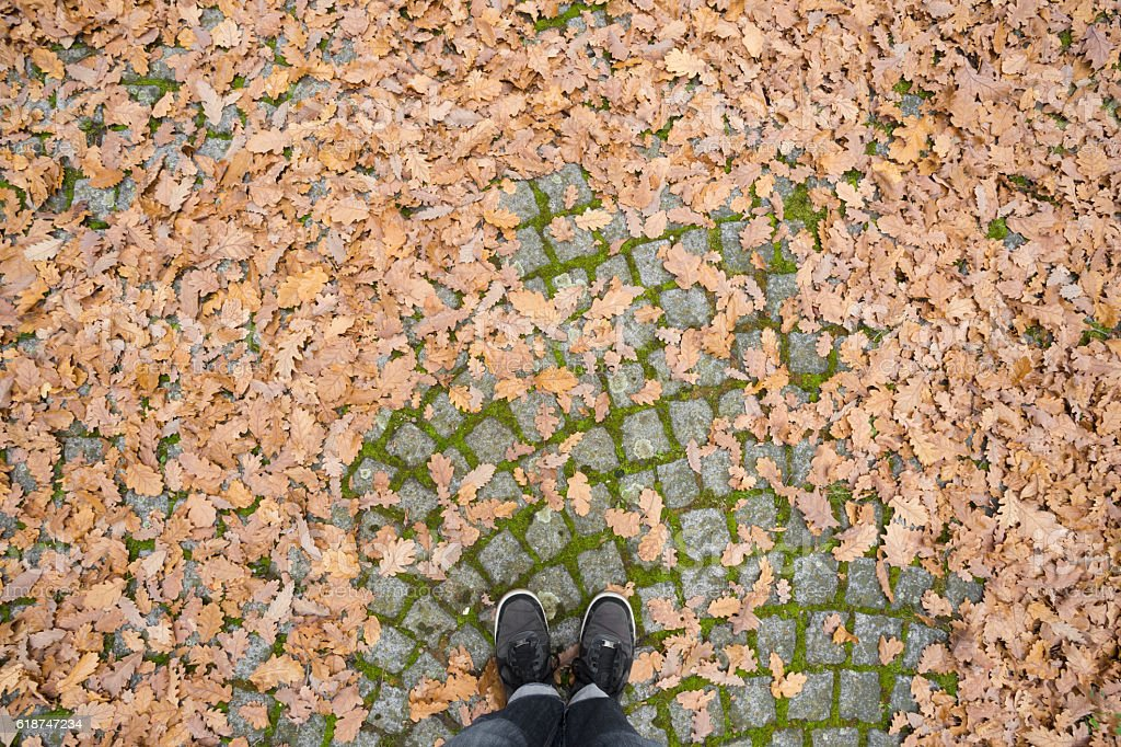 Paving covered with dry leaves in autumn. Personal perspective. stock photo