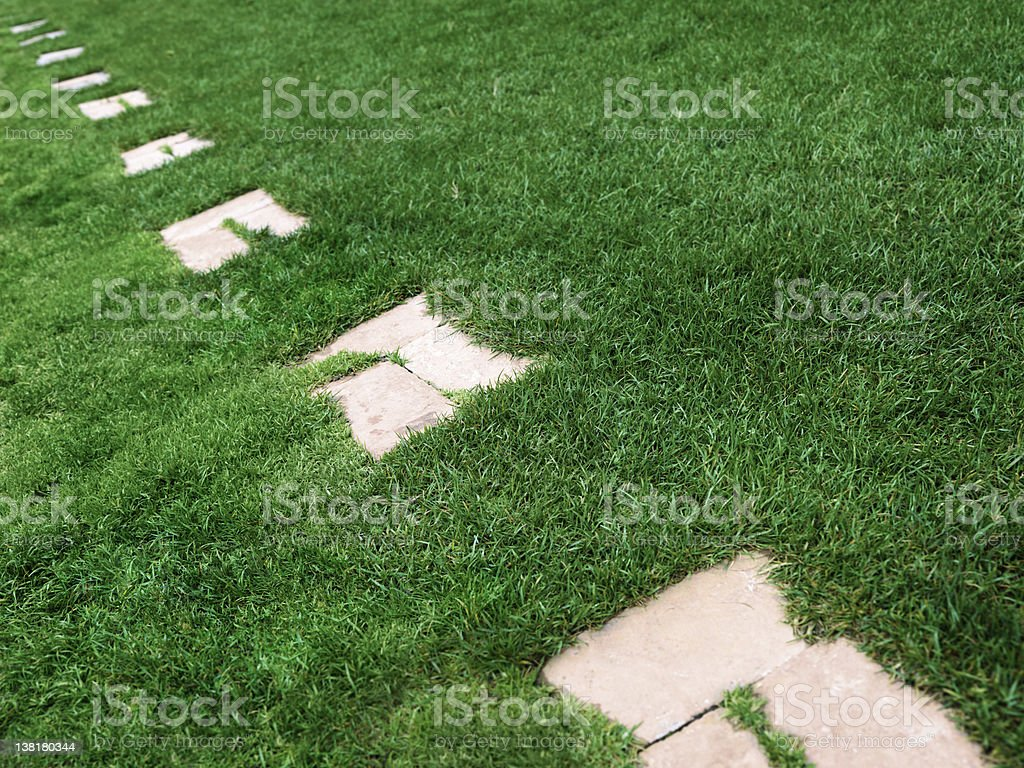 Paving stone on grass royalty-free stock photo