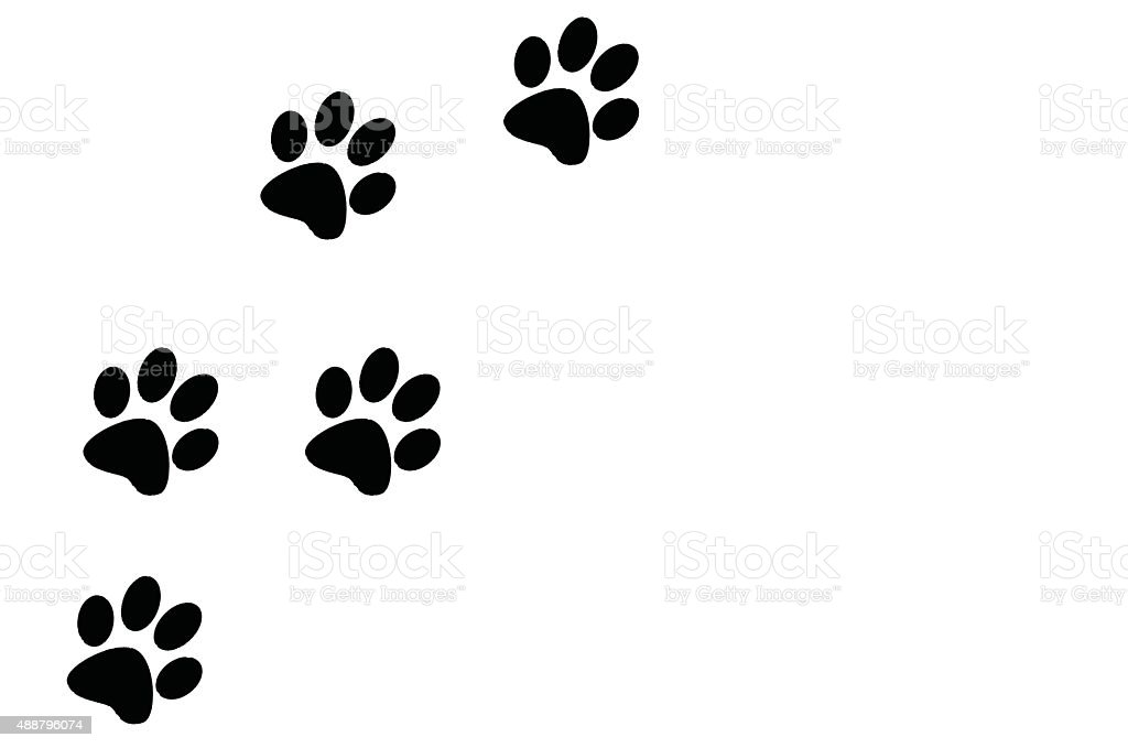 paw prints black on a white background left of frame stock photo