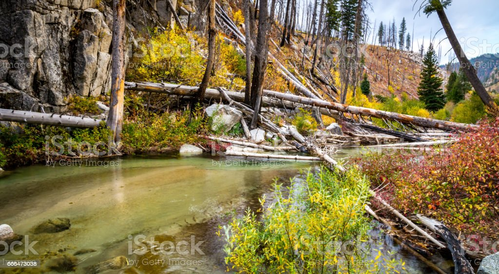 Payette River stock photo