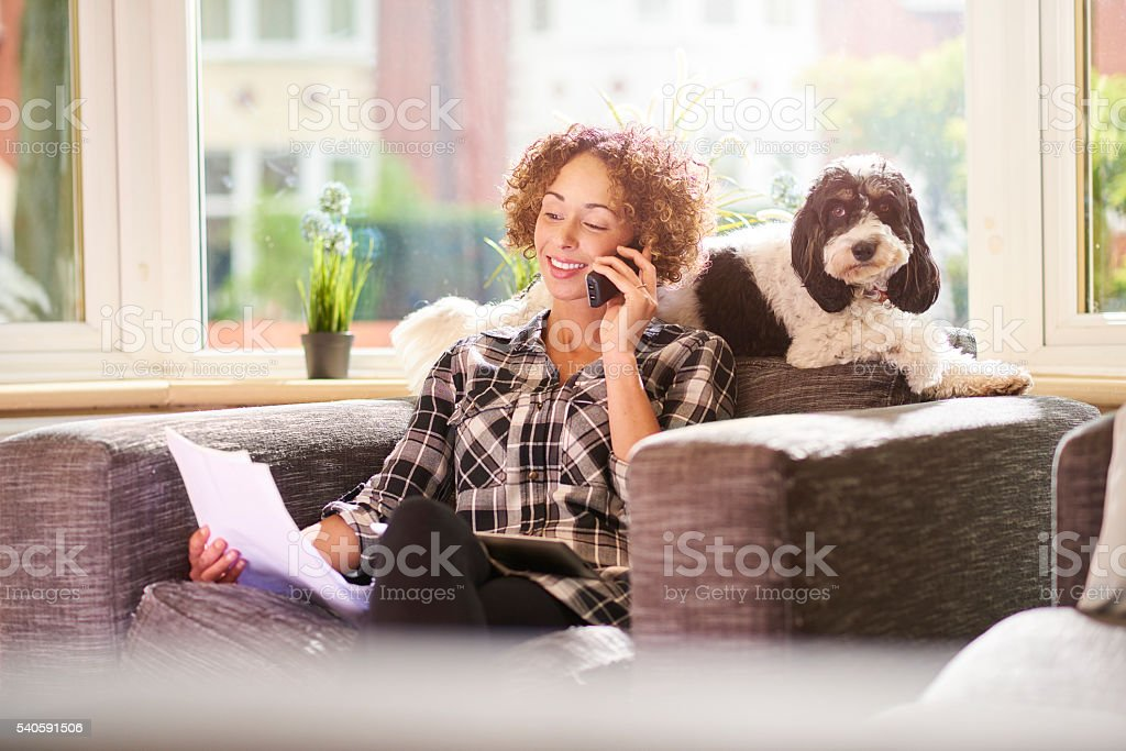 paying the pet insurance stock photo