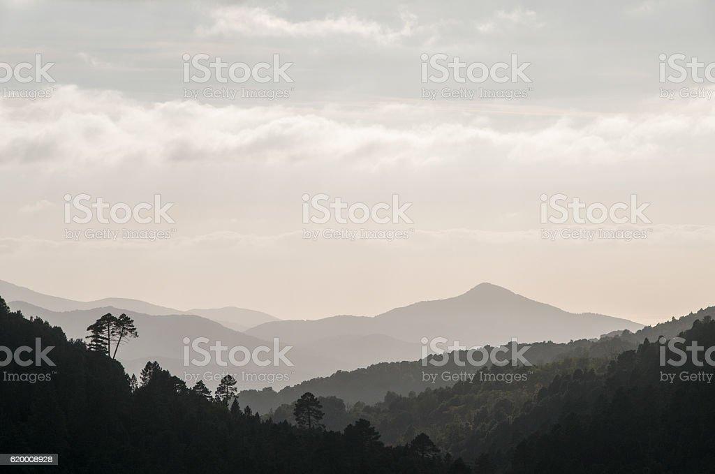 paysage Corse en noir et blanc stock photo