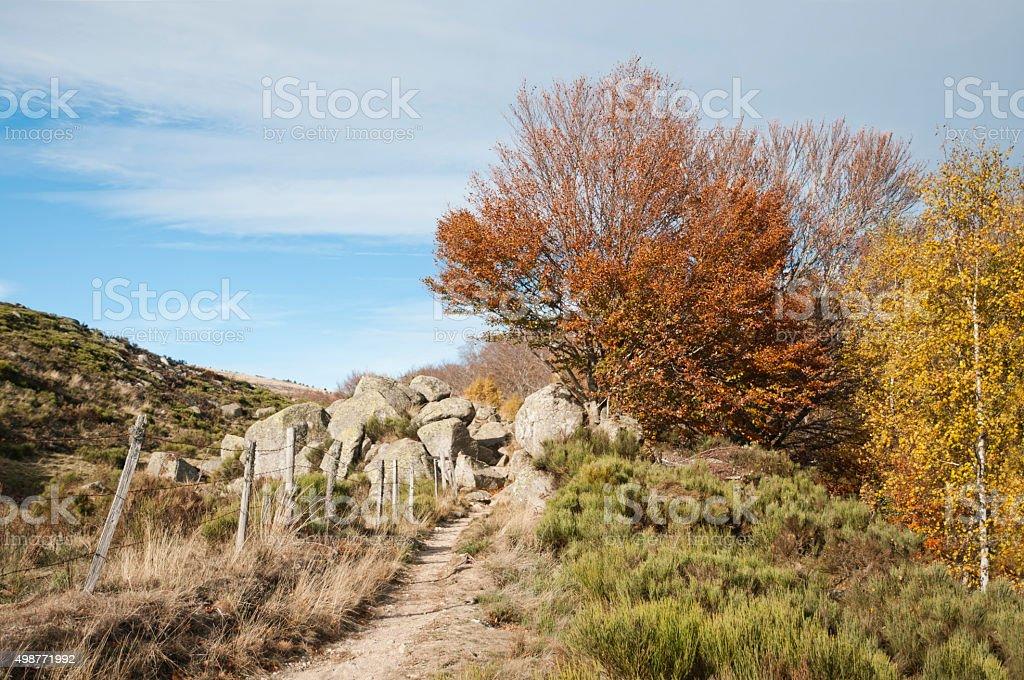 Paysage des Cevennes stock photo