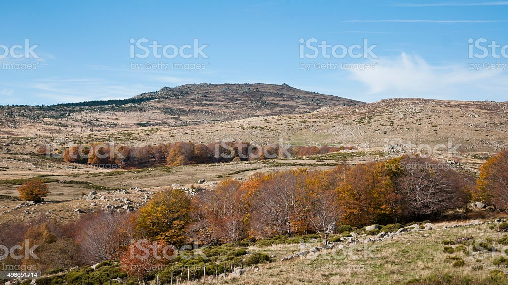 Paysage du  parc national des Cevennes stock photo