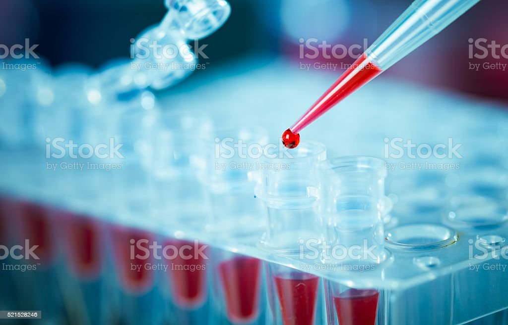 pcr analysis dna profiling stock photo