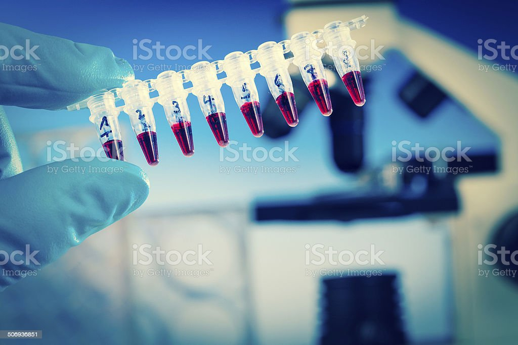 pcr strip stock photo