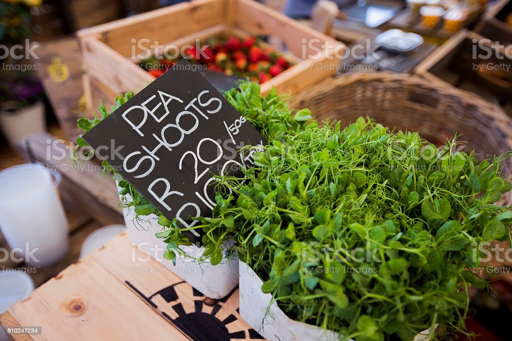 Pea shoots are sold in safe stock photo