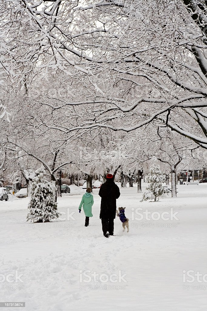 Peace and joy in winter park royalty-free stock photo