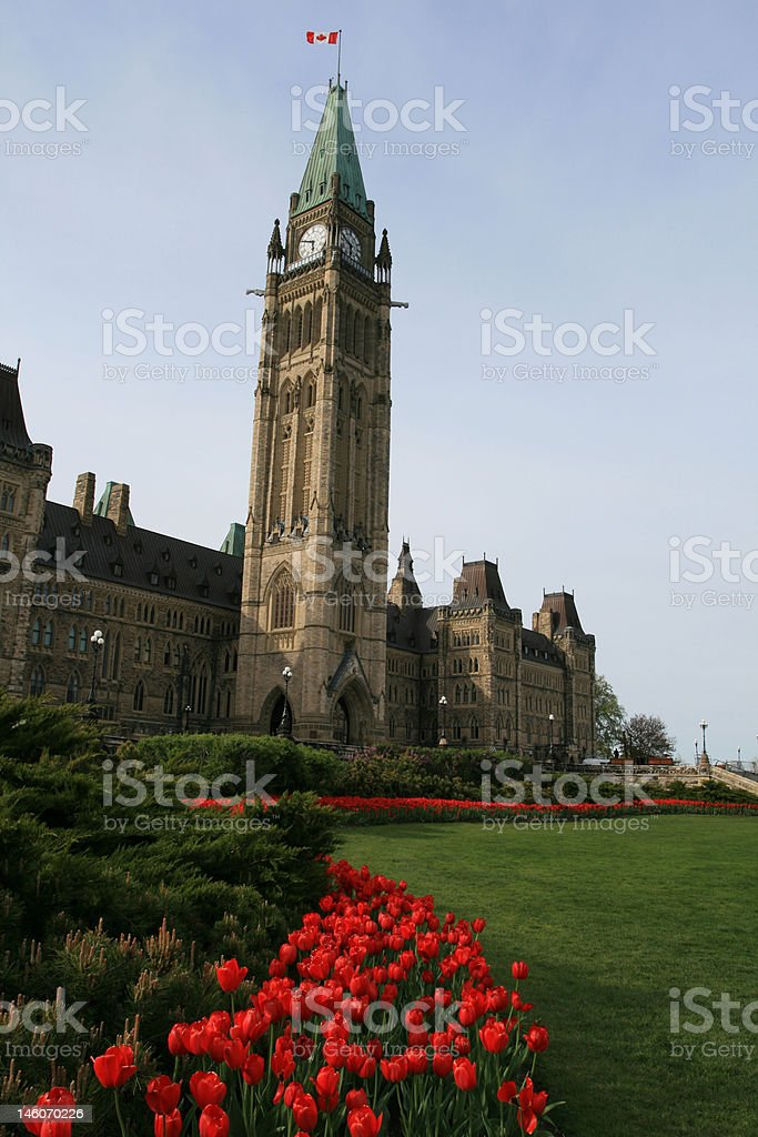 Peace Tower and Tulips royalty-free stock photo