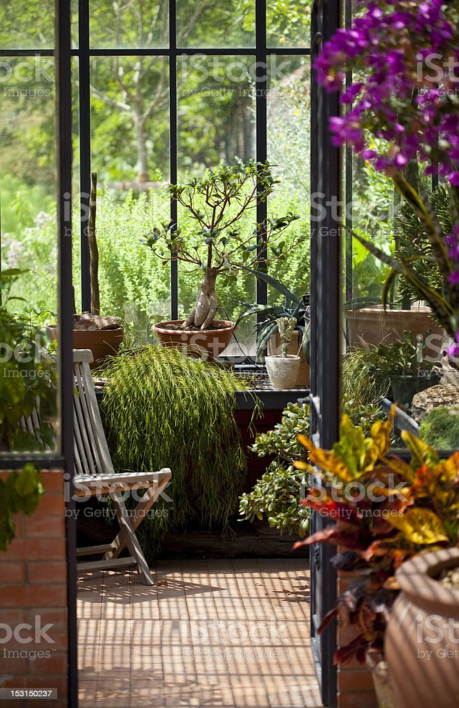 Peaceful and beautiful greenhouse with big glass windows stock photo