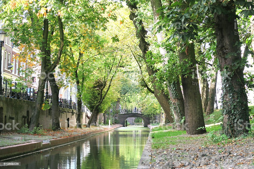 peaceful autumn canal with trees reflexing in water utrecht stock photo