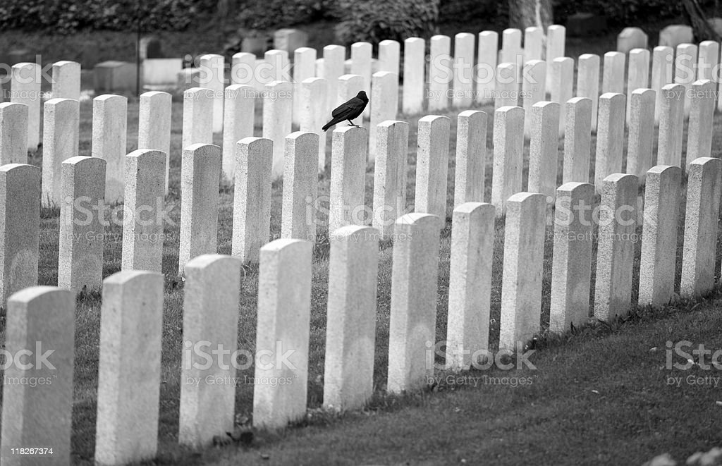 Peaceful Cemetery and grave stone markers in Montreal, Canada stock photo