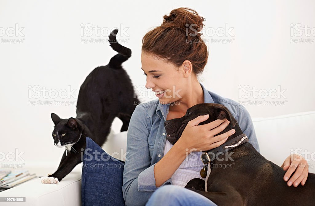 Peaceful coexistence stock photo